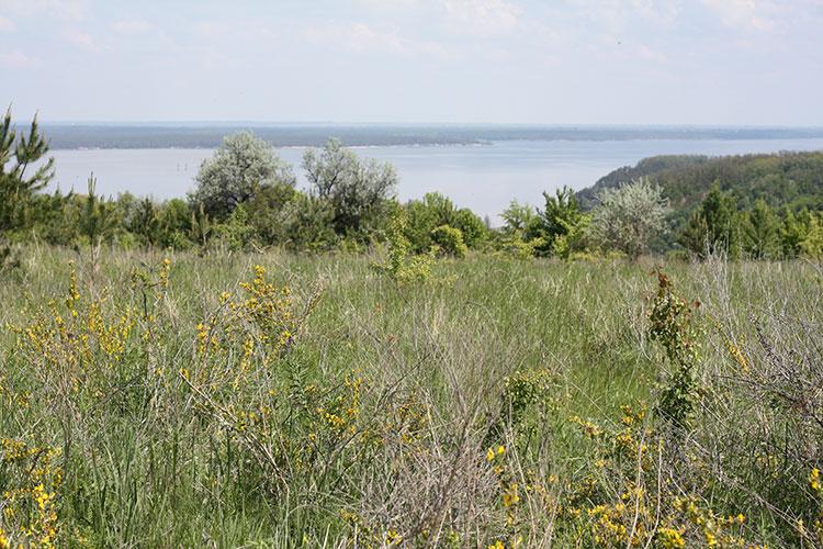 полуостров Трахтемиров, Украина